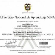 Coches Manuales Estudios Por Internet Del Sena